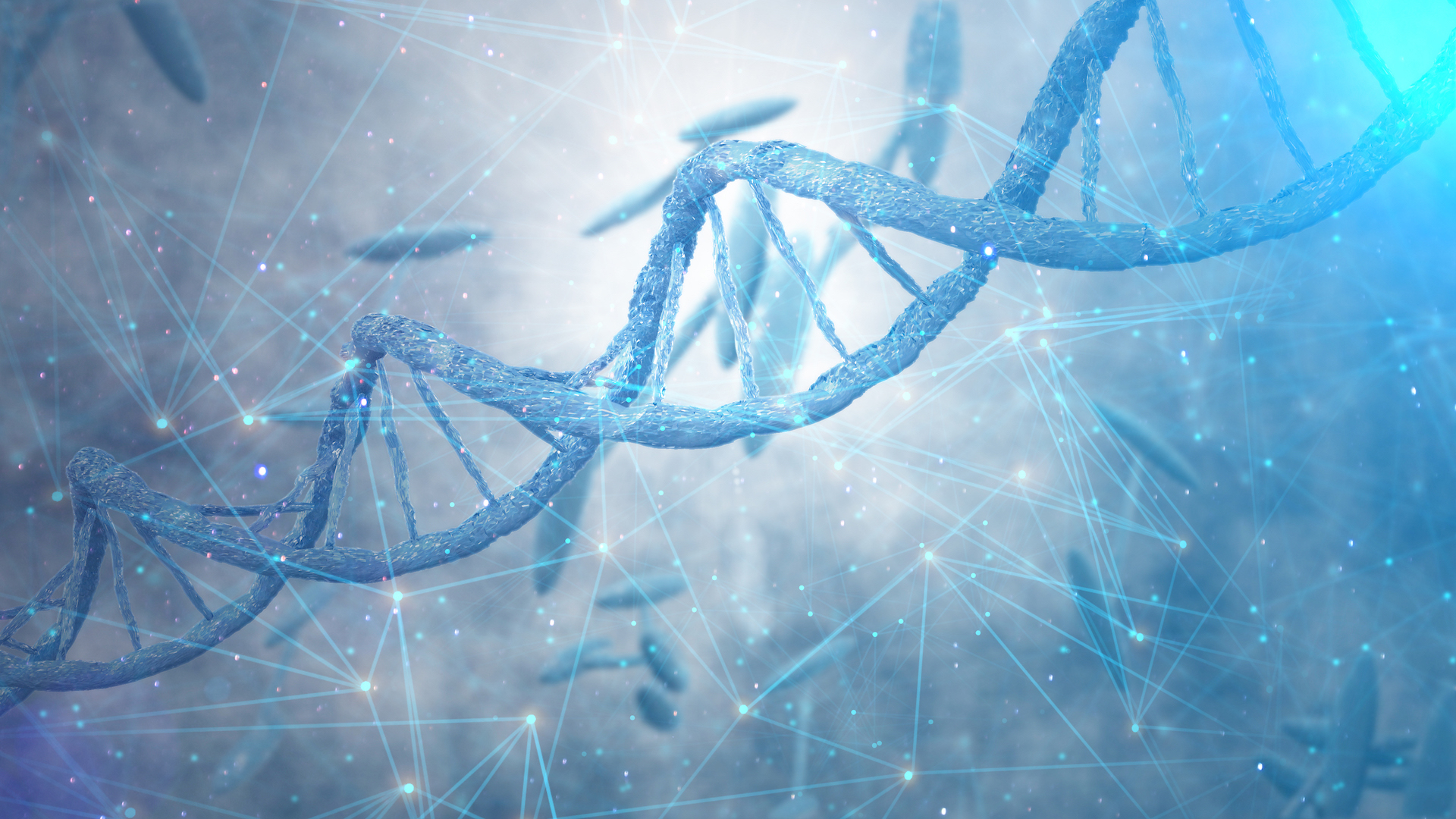 stem cell therapy and healthy aging